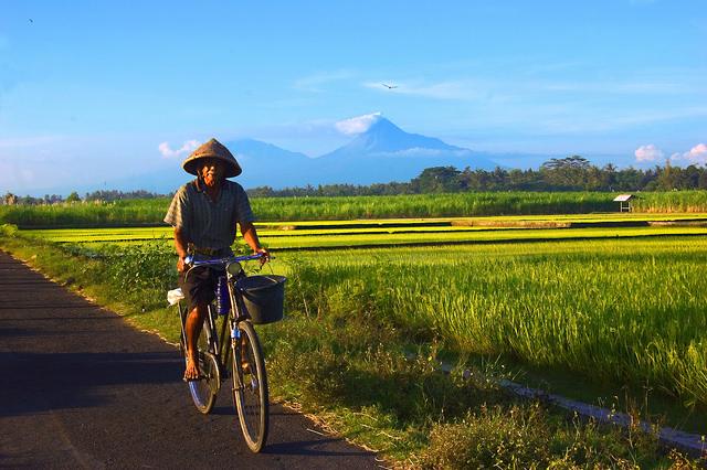 Lokalisasi Indonesia di Kampung Saya